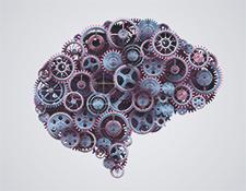 aktiv mit ms kognition